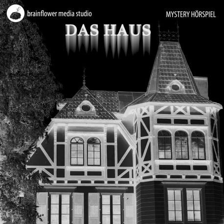 Das Haus (Andy Suess) Brainflower Media 2017