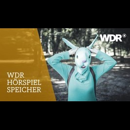 WARPOP MIXTAKE FAKEBOOK VOLXFUCK PEACE OFF! 'Schland Of Confusion (andcompany, Co.) WDR 2016